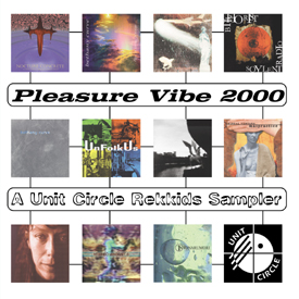 Pleasure Vibe 2000 cover